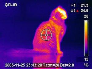 thermal-imagers-thermal-camera-infrared-camera